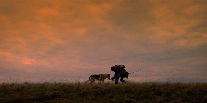 Alpha: trailer e poster italiani del film con Kodi Smit-McPhee