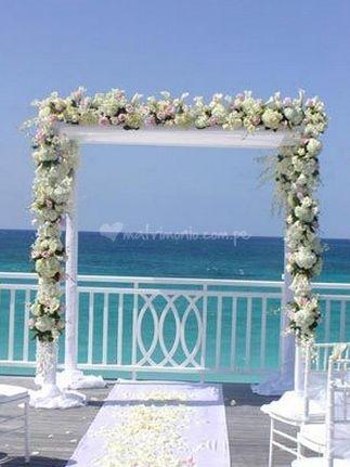 Arco con flores de Los Claveles Anabel   Foto 1