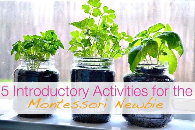 Modern Parents Messy Kids: Make Like a Montessori Mama: Part 2 - Plant Activities