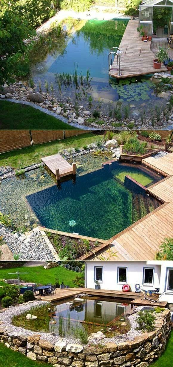 Immediately Swimming Natural Family Design Pools Want Jump Into You 17 To17 F Natural Swimming Pools Building A Swimming Pool Swimming Pool Designs