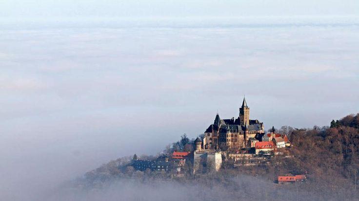 Wetter: Bibber-Sonne – Wann wärmst Du endlich Deutschland auf? -  Das Schloss in Wernigerode (Sachsen-Anhalt) ragt aus dem Nebel hervor. Darüber gibt's Sonne satt  http://www.bild.de/news/inland/wetter/wann-waermt-die-sonne-deutschland-auf-39778218.bild.html