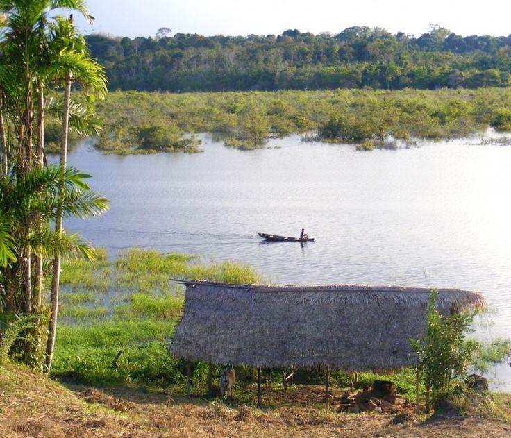 Un mondo fuori dal mondo, dove siamo solo di passaggio. Amazzonia, Brasile.