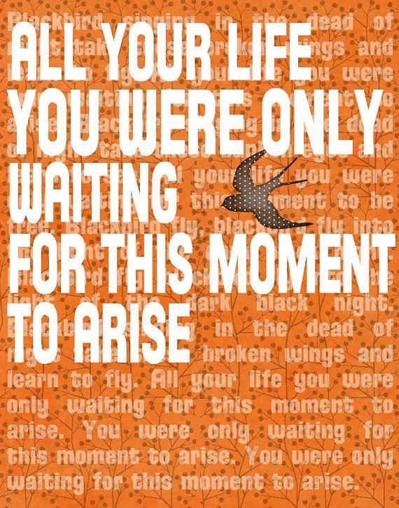 Beatles Lyrics BLACKBIRD - Word Art Prints - Contemporary Greeting Card Tangerine Tango 5x7  Motivational $8