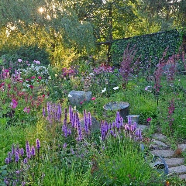 Mein Schoner Garten On Instagram Einmal Mehr Natur Bitte So Holt Ihr Euch Mehr Natur In Den Garten Tippt Naturnaher Garten Garten Naturgarten