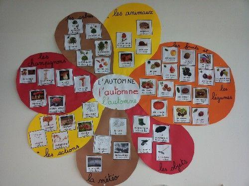 Fleur de langage: pour un thème, un album: lister le voc, l'ilustrer puis le catégoriser, l'afficher. Pr fixer: jeu de devinettes.  A tester !