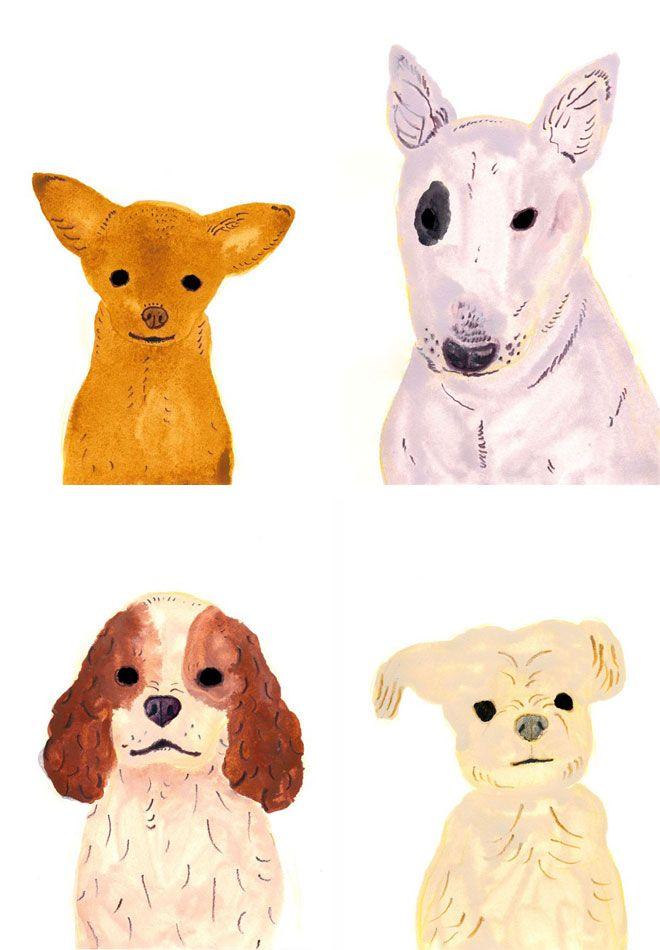 dog portraits by Itsuko Suzuki