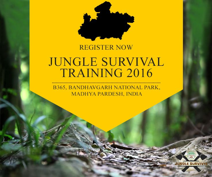 Are you ready for doing something different than the rest? Get enrolled in India's first #Survivaltraining. Explore the jungles of Bandhavgarh National Park with ex-army personnel who will train you in some of the most important survival skills.  Book Here: http://www.bandhavgarh365.com/jungle-survival-activity/ #wildernesssurvival #JungleSurvival