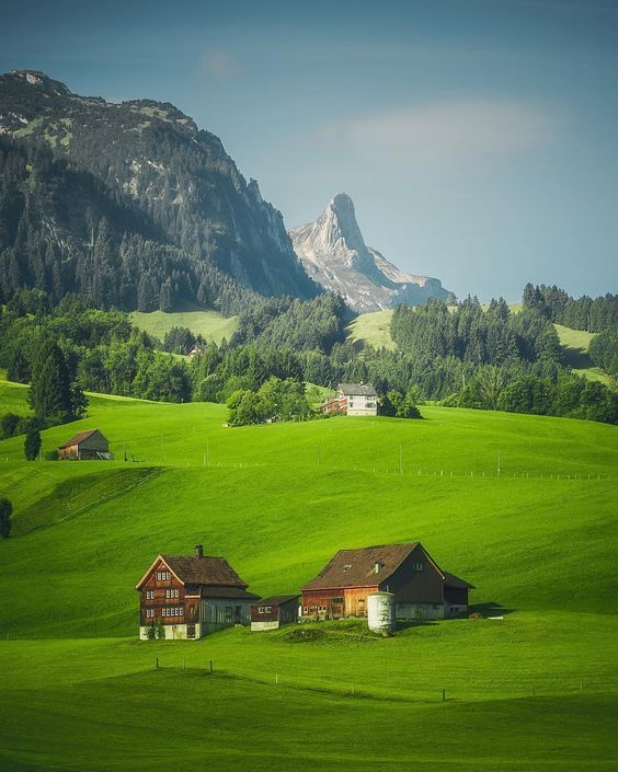 Close encounters with nature to rejuvenate your life when you visit,Appenzell, Switzerland!