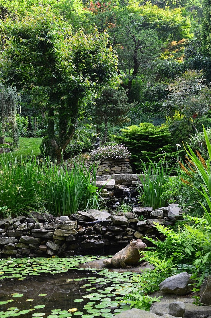 429 best garden ponds images on pinterest garden ideas backyard