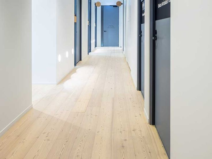 Allergy Medical Double Bay   Hassell Studio   Larch wood flooring by Mafi