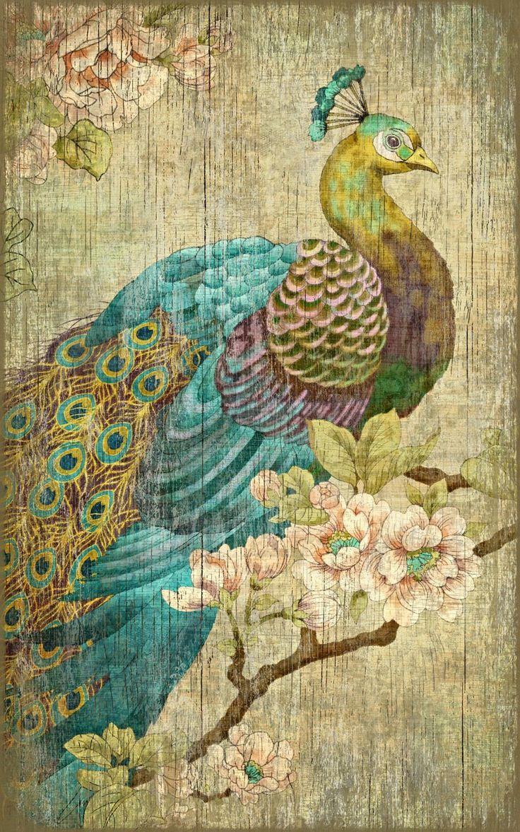 25+ Unique Peacock Wall Art Ideas On Pinterest