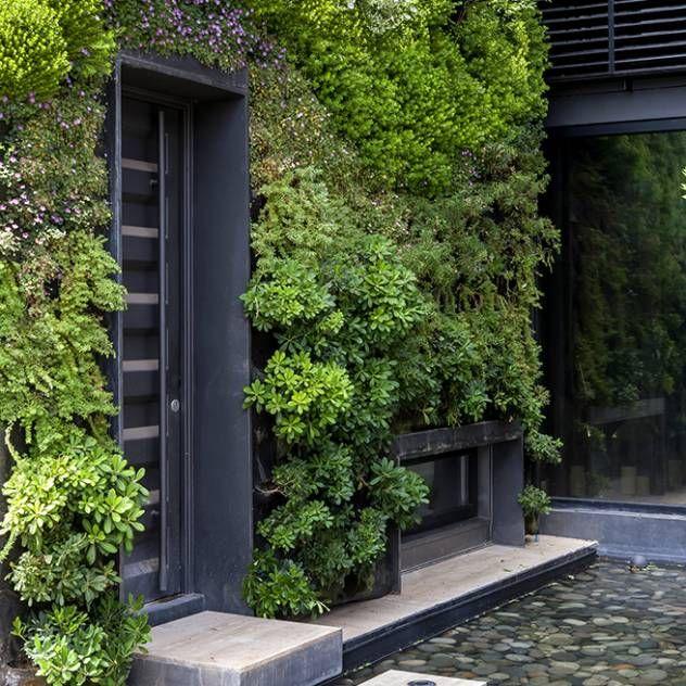 Mejores 113 im genes de los mejores patios y jardines en for Arreglar jardin abandonado