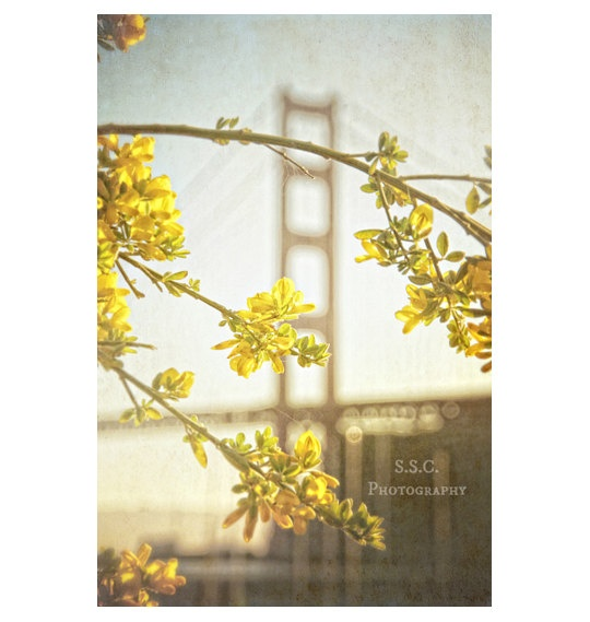 Vintage Golden Gate Bridge Photo San Francisco by SSCphotography, $28.00