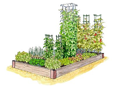 4x8 Raised Bed Vegetable Garden Layout