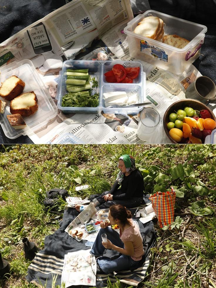 picnic, camlihemsin