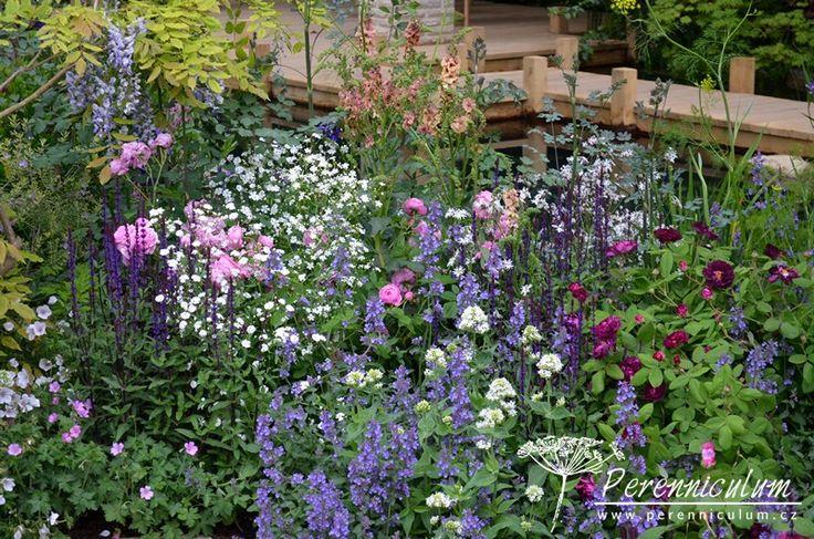 Směs romanticky laděných trvalek na břehu jezírka zahrady hlavního sponzora Chelsea M&G Investments.
