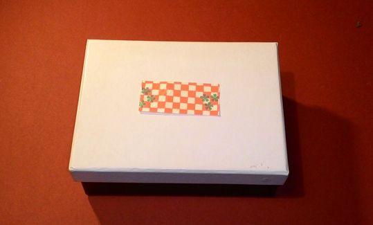 La casina nella scatola 1
