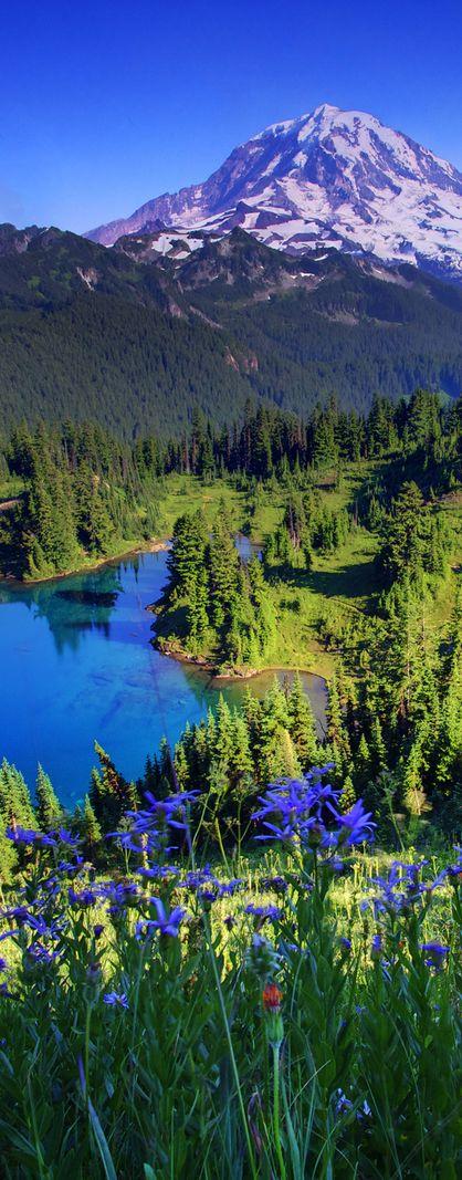 Mount Rainier National Park, Washington, USA