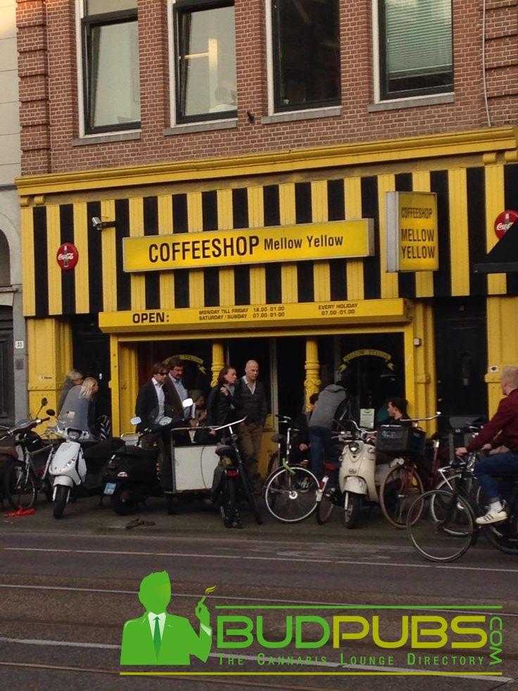 The Mellow Yellow is a Historic Amsterdam Weed Coffee Shop. A True Trailblazer in the Worldwide Cannabis Movement! www.BudPubs.com #Amsterdam #Cannabis #Marijuana #Weed #Travel #Maryjane #Coffeeshops #Holland