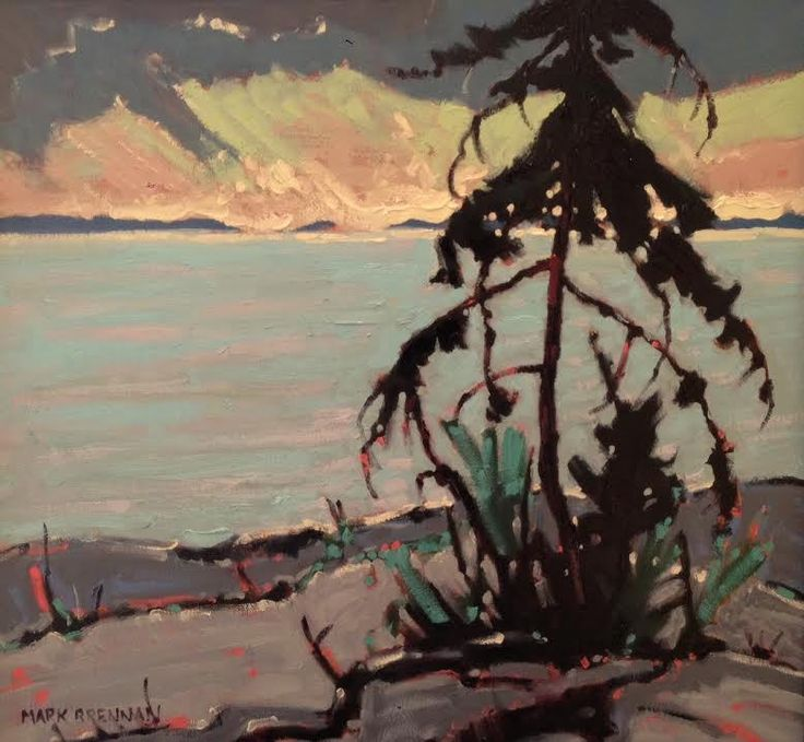 """Pine As Night Closes In, Ruckle Prov Park, Salt Spring Island"" 12"" x 13"" Oil on Board, Mark Brennan at Argyle Fine Art www.argylefineart.blogspot.com"