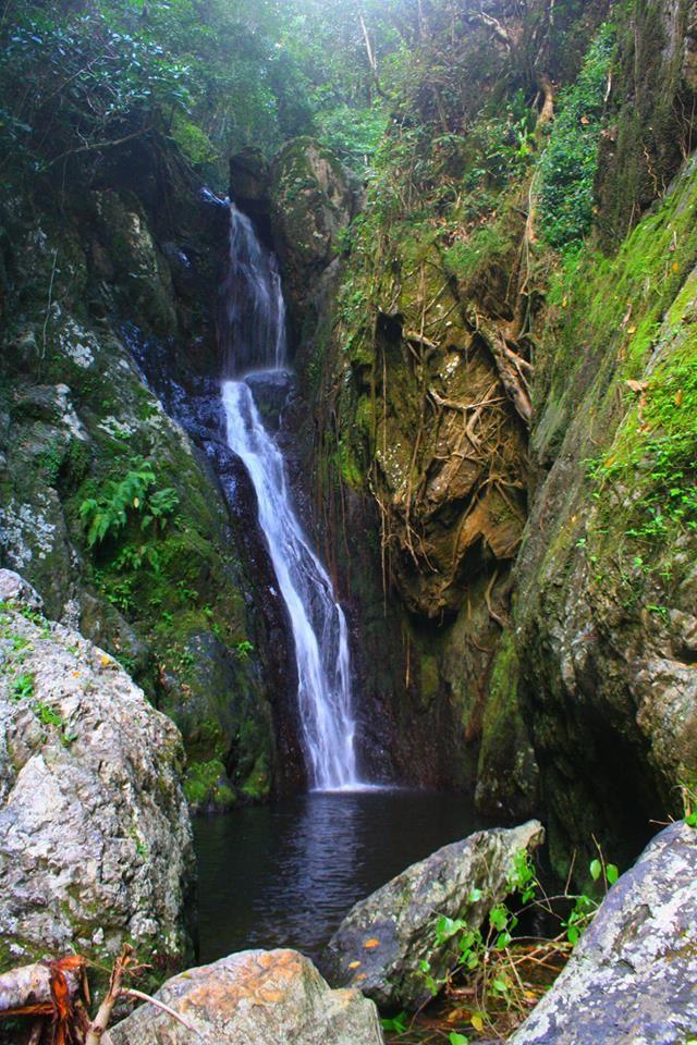 A beautiful waterfall near Cairns Australia - Photorator |Cairns Australia Waterfalls