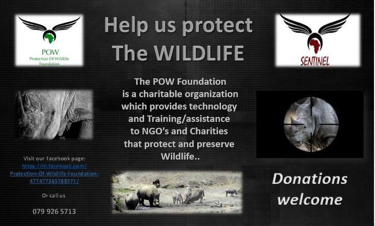 https://m.facebook.com/Protection-Of-Wildlife-Foundation-477477365788271/?