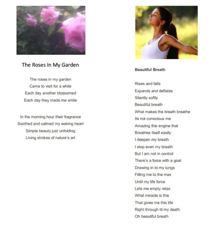 Poetry by Sandra Hillawi - Roses in my Garden and Beautiful Breath