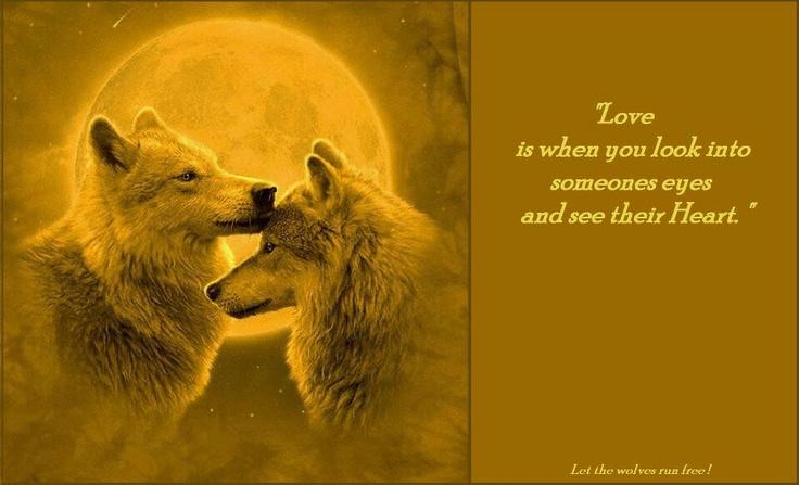 Wolf saying