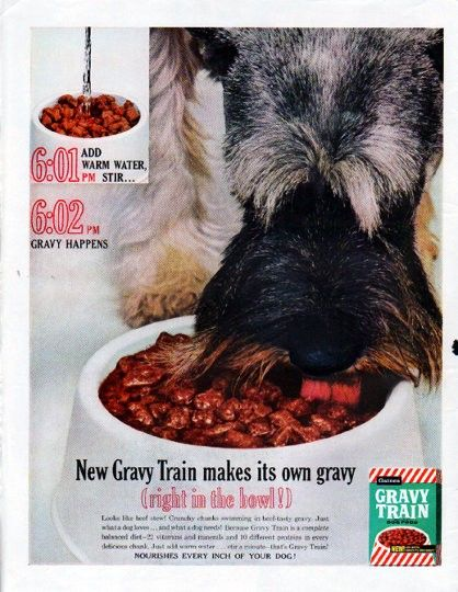 Retro Vintage Cat And Dog Foods
