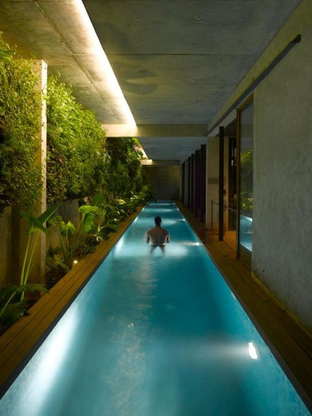 Long And Narrow Indoor Pool With An Indoor Garden Indoor