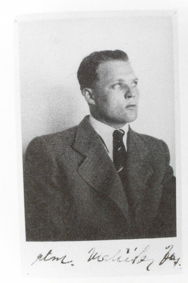 Josef Valčík