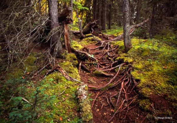 Pukaskwa National Park, Ontario, Canada - Lake Superior