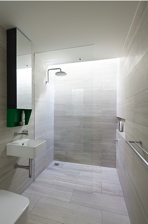 highlight window in bathroom would be great in ensuite perhaps in high side of skillion roof over shower and toilet. Improved privacy and light. Possibility of flat ceiling section like this. 2013 Houses Awards New House under 200m2 Paling Fence House (Shortlisted)