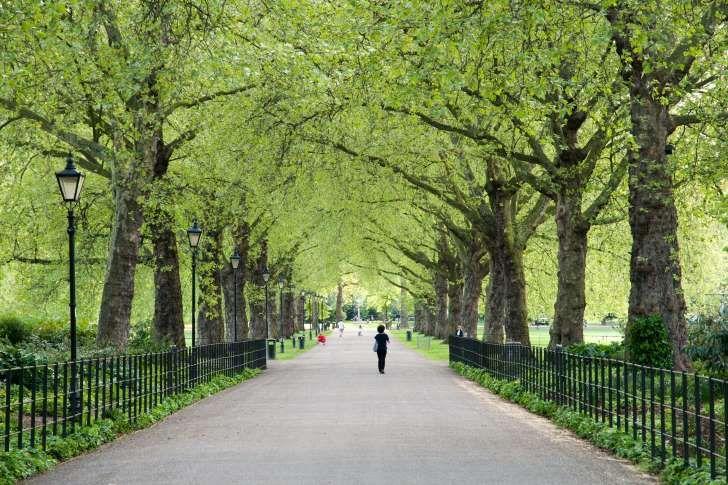 Battersea Park, (Hyde Park) London