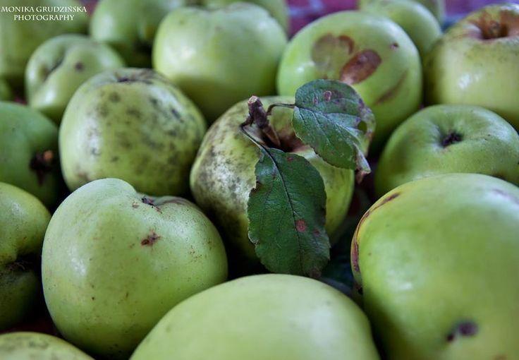 jedz jabłka, będziesz zdrowy! :)