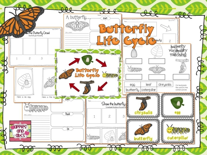 Life Cycle of the Butterfly (from Apples and ABC's)