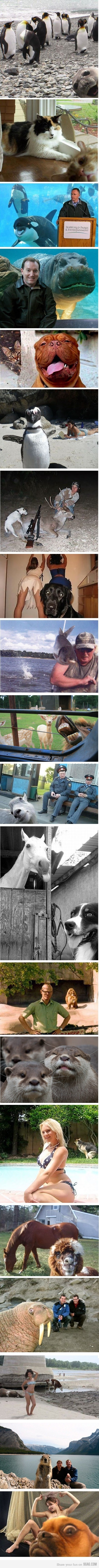 animal photobombs are the bestest