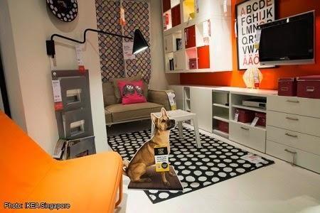 Innovativa campagna di Ikea per promuovere l'adozione di cani e gatti senza casa