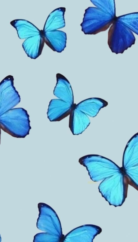 Pin By Nadine Dijkstra On Butterflies In 2020 Butterfly Wallpaper Cute Desktop Wallpaper Pretty Wallpapers