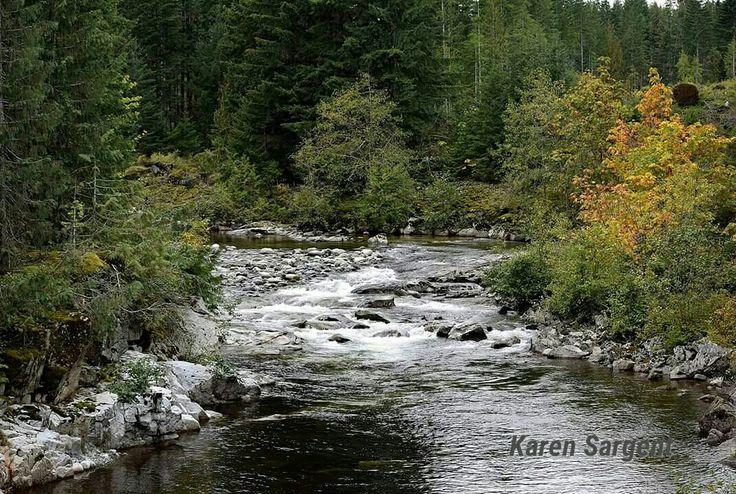 Nanaimo River along the Nanaimo Lakes Road