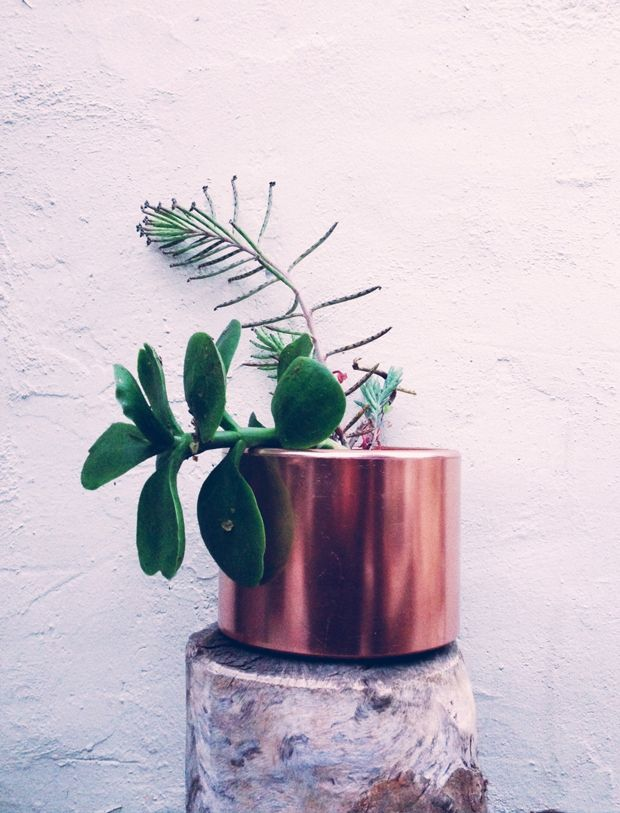Copper Planter DIYDiy Copper, Copper Planters, Upcycling Copper, Planters Diy, Copper Can, Quick Diy, Diy Projects, Pots Turn, Justina Blakeney