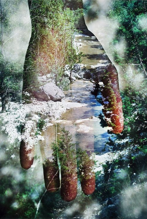 destructs:  Traci Matlock | TumblrPalm-reading In Utopia, 2012