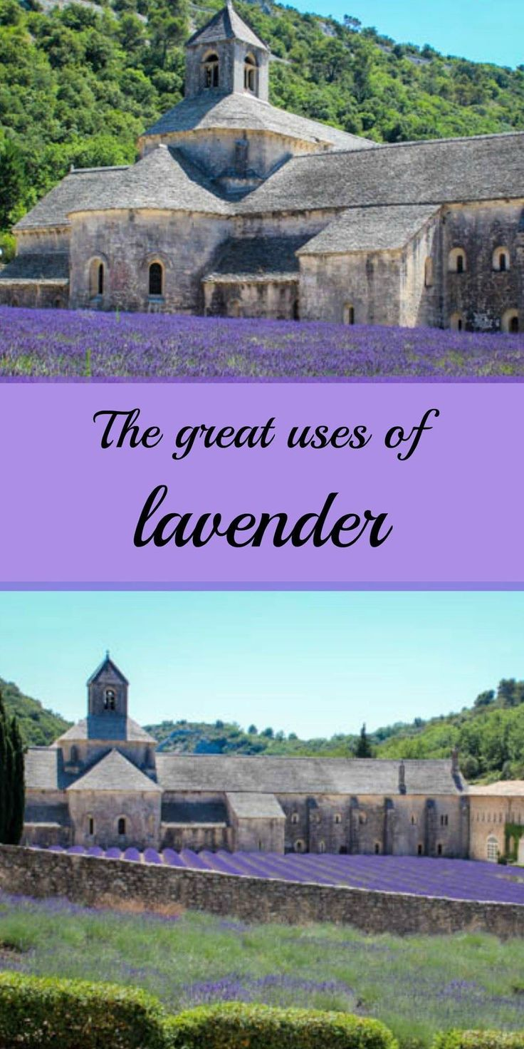 Today, lavender essential oil is the most used in the world, here are some of the most popular: http://www.nobletandem.com/lavender-the-wonderful/