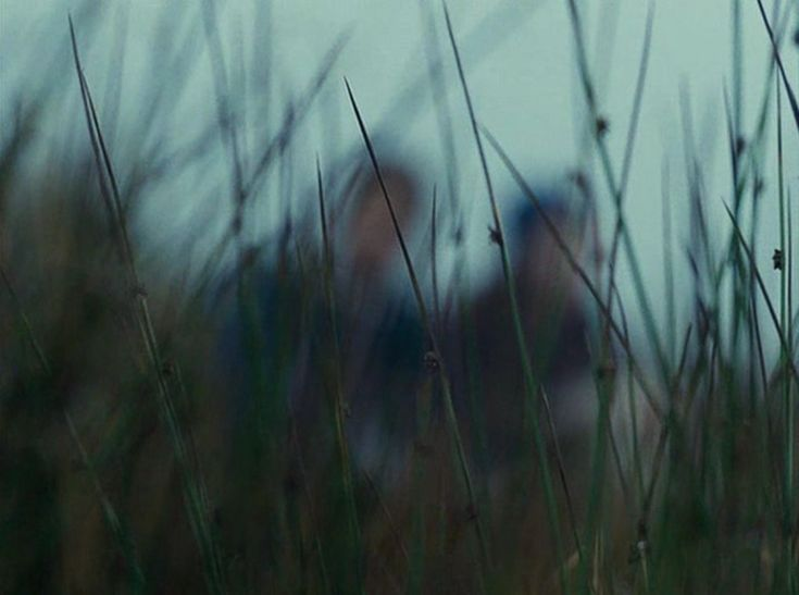 Wuthering Heights (2011)  by Andrea Arnold