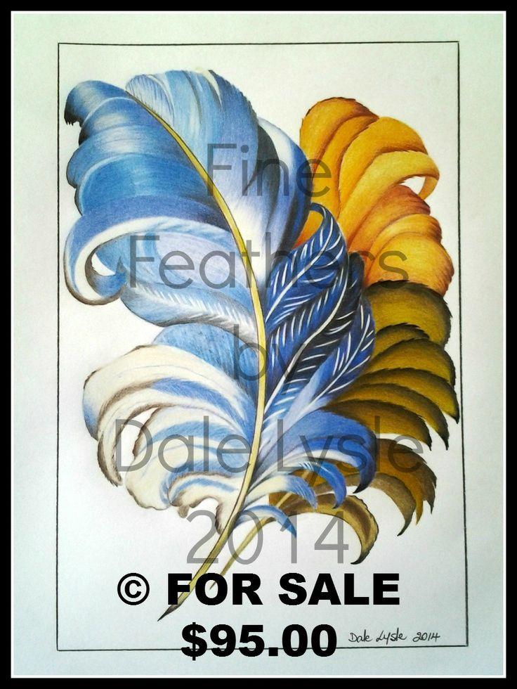 Fine Feathers - A3 Polychromos colour pencils Framed
