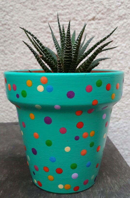 Haworthia. Caribbean green hand painted flowerpot. Verde caribe. Macetas pintadas a mano. Facebook: A'cha Pots. achapots@hotmail.com