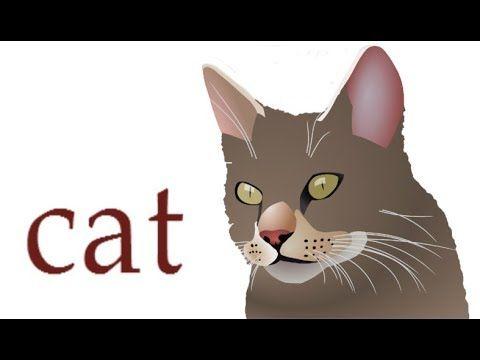 Як намалювати кота, як намалювати голову кота, #draw, як намалювати крас...