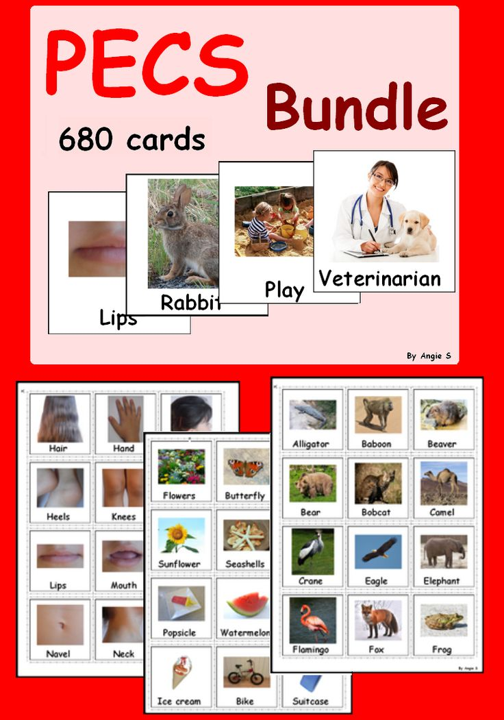 Autism Bundle (730 cards) Purchase this BUNDLE and SAVE 20% off each product! It contains 22 of my products. #Autism #pecs For more resources follow https://www.pinterest.com/angelajuvic/autism-special-education-resources-angie-s-tpt-sto/