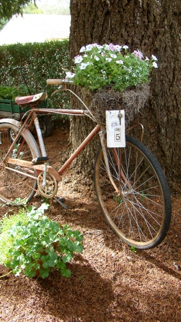 Love Bikes And Flowers For The Garden. Vintage Flower Bicycle.