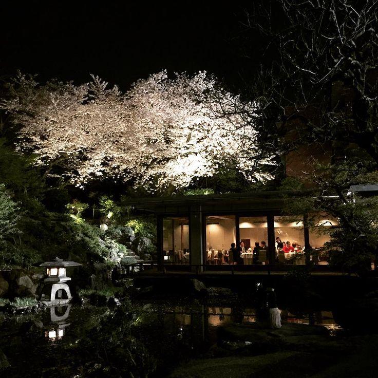 "309 Likes, 5 Comments - ELLE DECOR JAPAN (@elledecorjapan) on Instagram: ""国際文化会館の素晴らしい夜桜。建築は前川國男、坂倉準三、吉村順三という3人の巨匠たちの共同設計によるものです。#桜 #cherryblossom #建築 #architecture #japan…"""